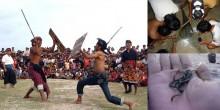 Ritual Bau Nyale Pasola