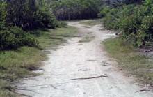 Jalan Menuju Pantai Surga Lombok